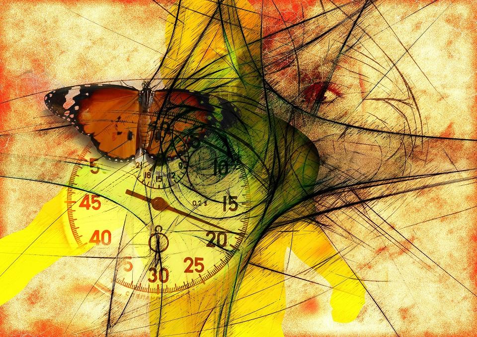 butterfly-744115_1920 (1)